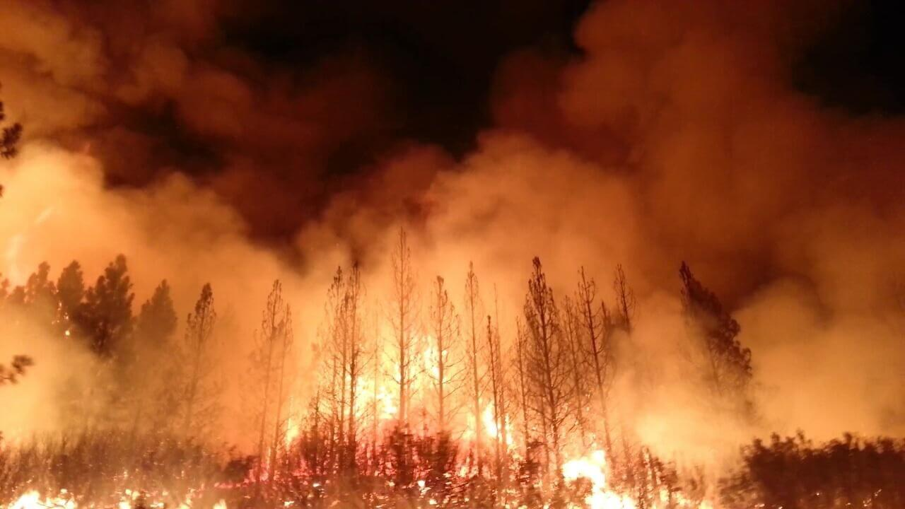 Robert Vowler California Wildfires: How Can You Help?